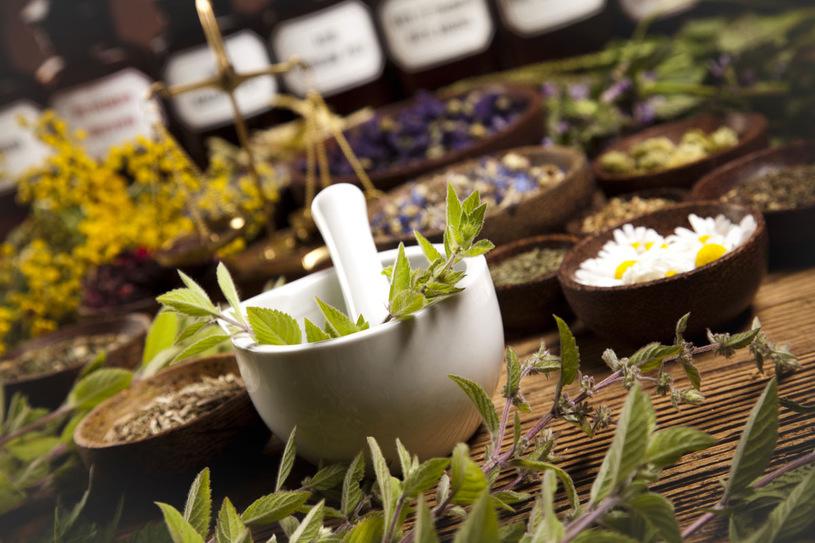 Gyógynövények használata a szépségápolásban – Hogyan hatnak és milyen előnyeik vannak?